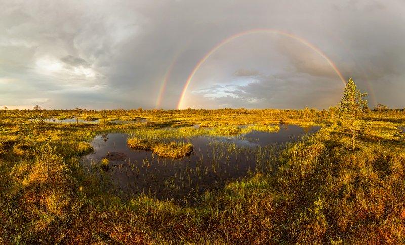 болото, радуга, ленобласть, ленинградская область \