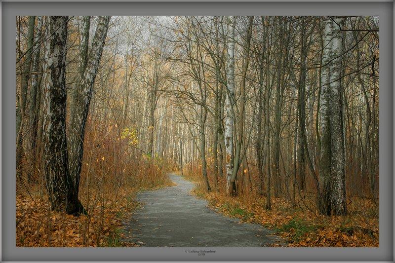 Осенняя пораphoto preview