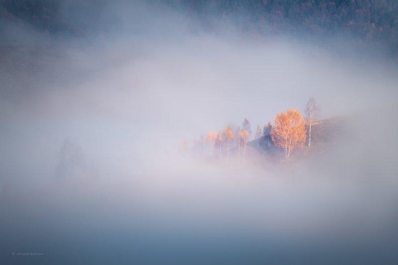 карпаты, осень, пейзаж, утро, рассвет, туман Моря и острова...photo preview