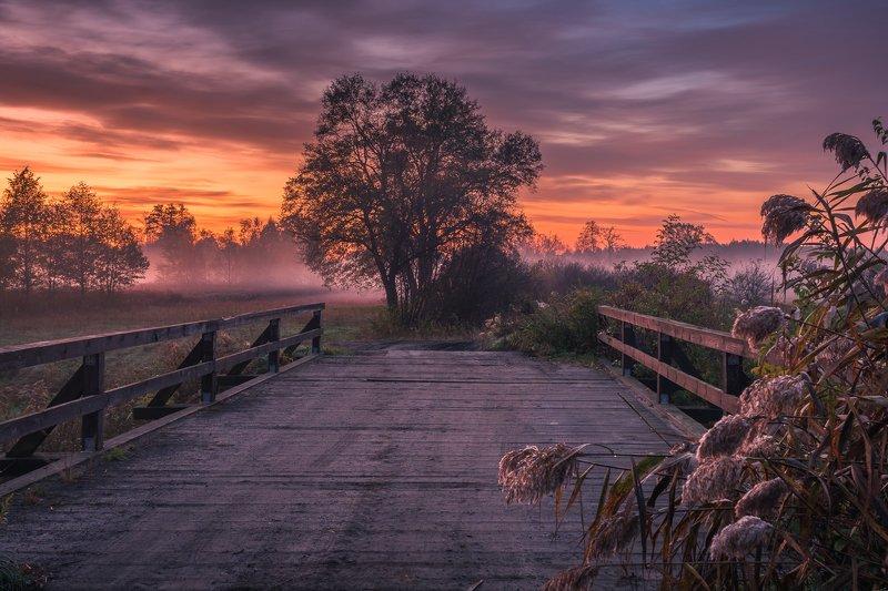 jeziorka, river, bridge, wooden, autumn, sunrise, landscape, nature, poland, dawn, view Bridge over the Jeziorka riverphoto preview