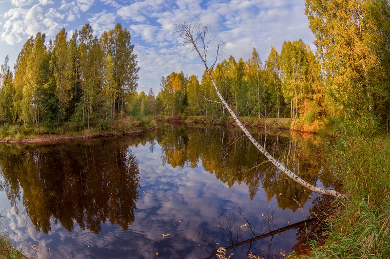 осень, река, речушка, глубоко, лодка, листья Тихий уголокphoto preview