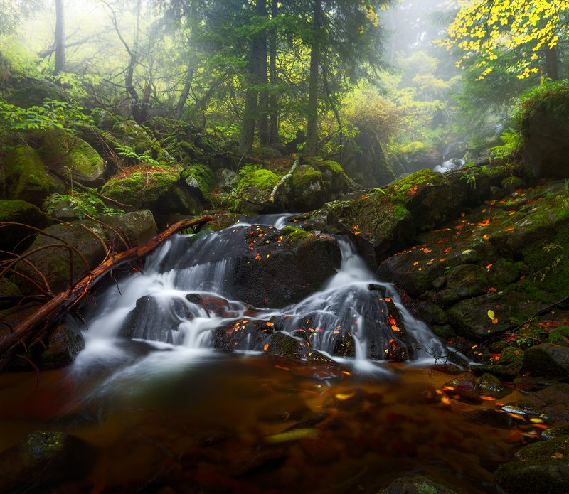 landscape nature scenery forest wood  autumn mist misty fog foggy rriver waterfall longexposure mountain vitosha bulgaria туман лес Autumn songphoto preview