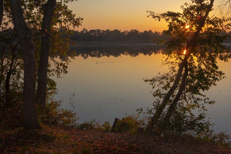 За рекой, за лесомphoto preview