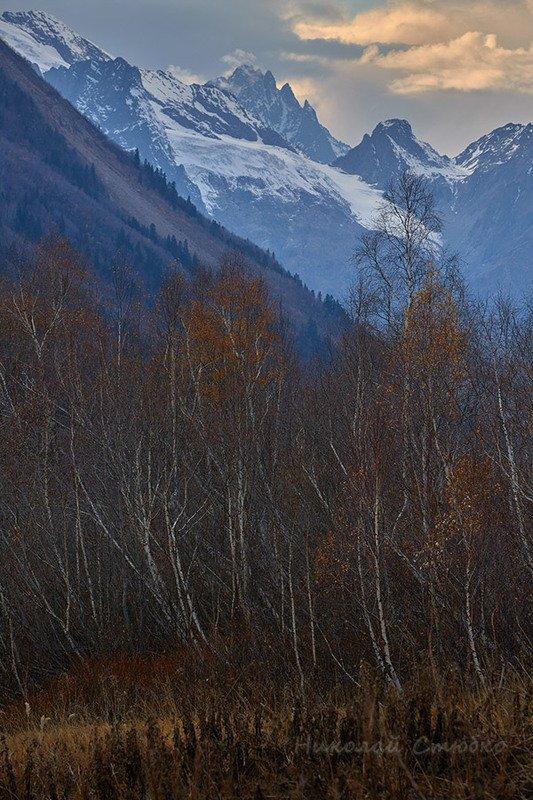 кавказ горы облака осень берёзы Сумеркиphoto preview