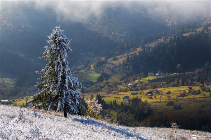 Осень встречает зимуphoto preview