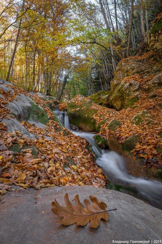 В Большом каньоне Крымаphoto preview