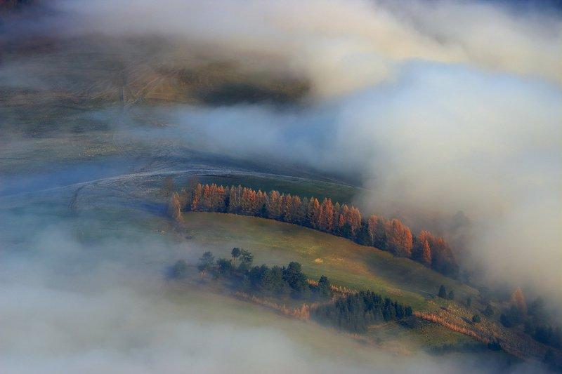 pieniny, mist, fog, trees, morning, sunrise, Curvesphoto preview