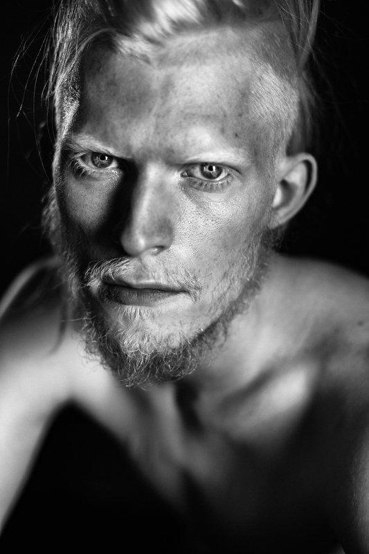 Albinophoto preview