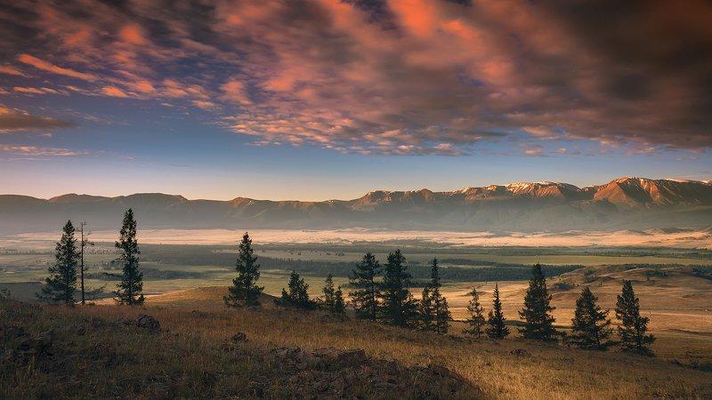 пейзаж, природа, утро, восход, облака, небо, красный, степь, долина, горы, Алтай, Курай, хребет, северо-чуйский, путешествие, туризм, панорама Утро в Куреphoto preview