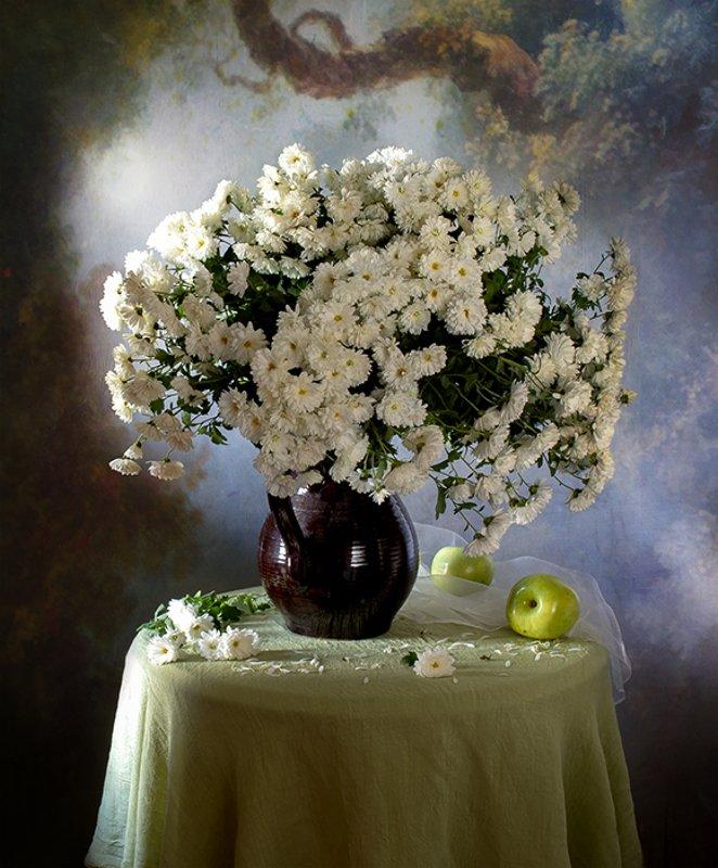 натюрморт, цветы Хризантемы осениphoto preview