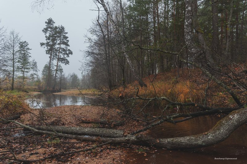 Поздняя осень на р.Боберphoto preview