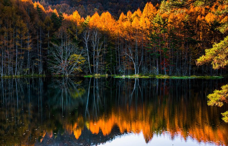 nature landscape japan mountain morning nagano autumn colors [ A Mirror in Nature ]photo preview