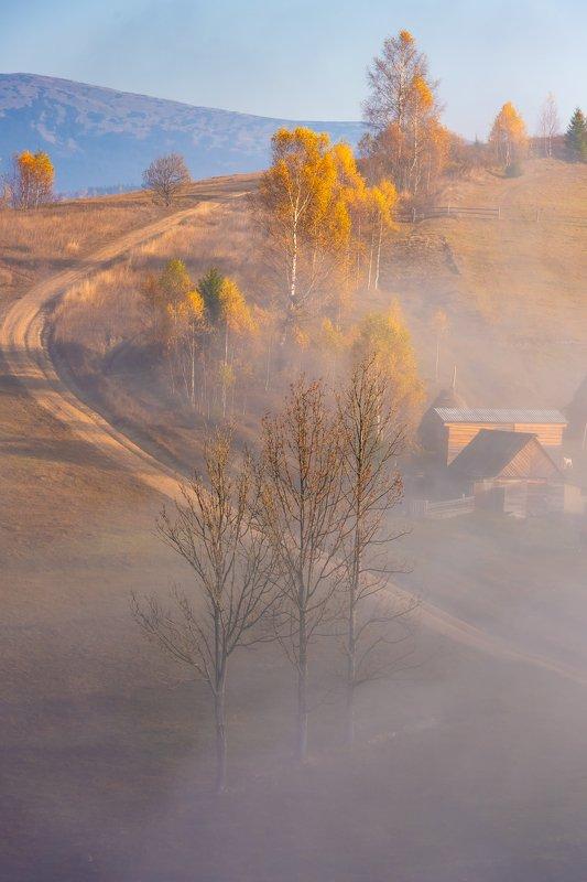 карпаты., осень., туман Карпаты. Осенние тропыphoto preview