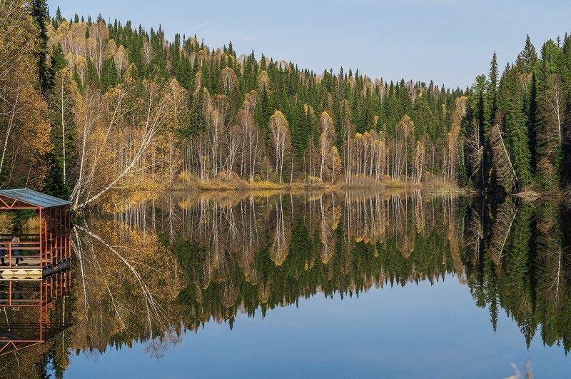 осень, вода, пейзаж  Отражение осени. photo preview