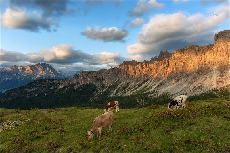 доломитовые альпы,passo giau,горы,val-pusteria,лето,италия,туман,alps,пейзаж СТРАНА МИЛКИphoto preview