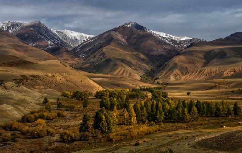 Осенний уголок Алтаяphoto preview