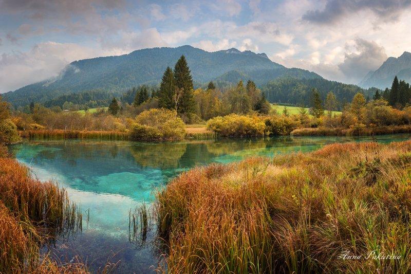 Озеро Зеленци (Zelenci) в Словенииphoto preview
