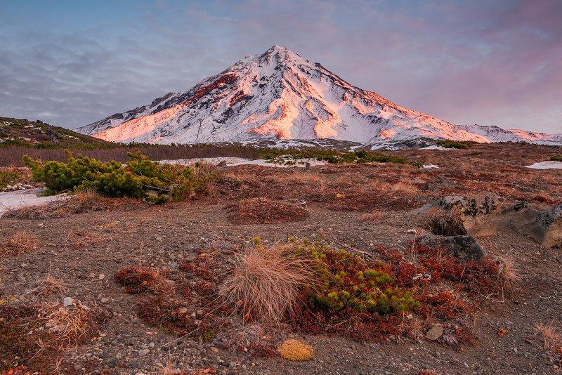 камчатка, вулкан, корякский Корякский вулканphoto preview