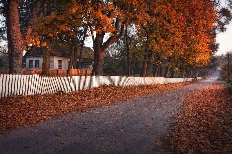 Осень сквозь года...photo preview