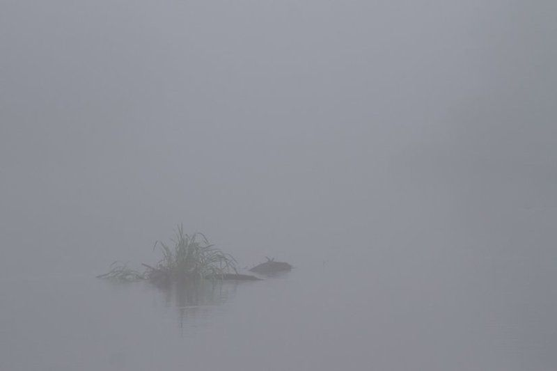 Раннее утро на Протвеphoto preview