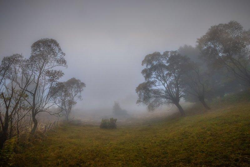 Туманное утро в трансельвании  Румынияphoto preview