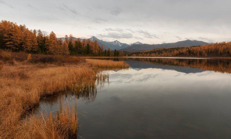 горный алтай, улаганский перевал, киделю Вечер на Киделюphoto preview
