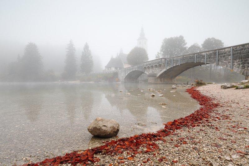bohinj, ribcev laz, slovenia, mist, fog, mood, morning, lake, bridge, church, stone, water, leaf Bohinjphoto preview