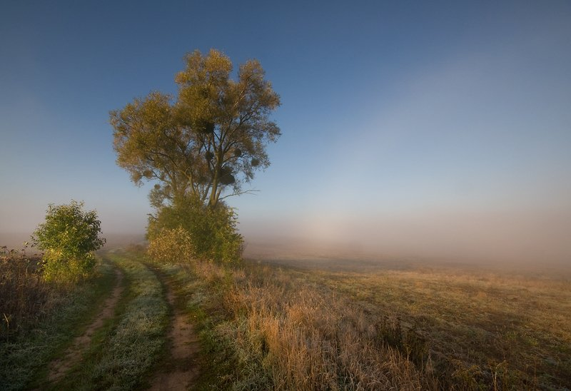october morning...photo preview