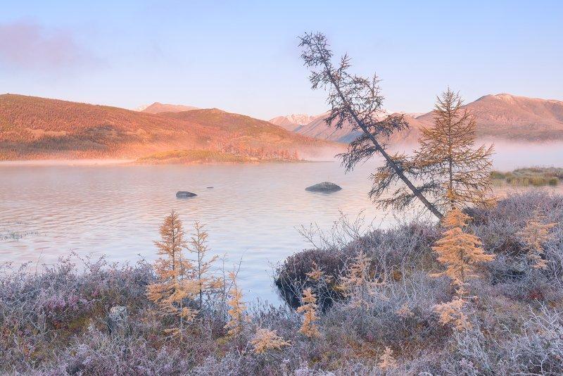 Морозное утро сентября....photo preview