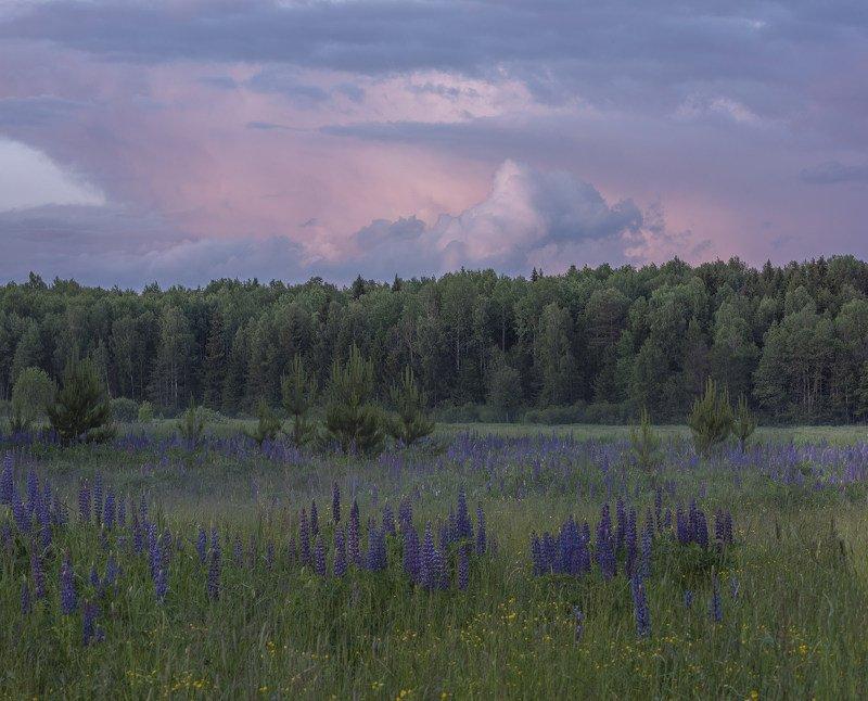 Фототуры с Владимиром Рябковым, #topnature #russpasibo #magic_shots #lovelyRussia #sunset_vision #exclusive_sky  #exclusive_shots #loves_russia2 #photoarena_nature #nature_sultans #nature_perfection #rsa_sky #rsa_sunset #photorussia #rsa_naturepics #sunse Сиреневый вечер...photo preview