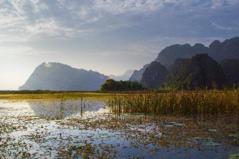 Vân Long swampphoto preview