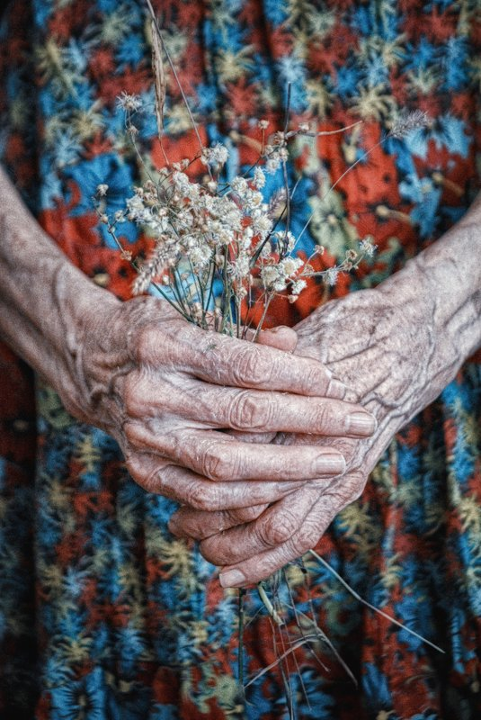 woman, old age, old woman, hands, flowers, женщина, старость, старуха, руки, цветы I hide myself within my flowerphoto preview