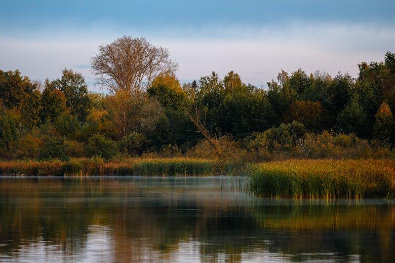 пейзаж, озеро Рождение туманаphoto preview