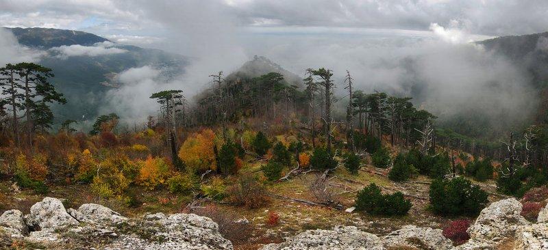крым, ялта, осень, горы Крым.Золотая осеньphoto preview
