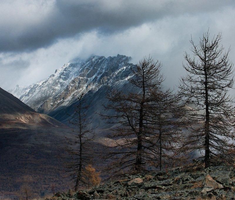 Скоро зима...photo preview
