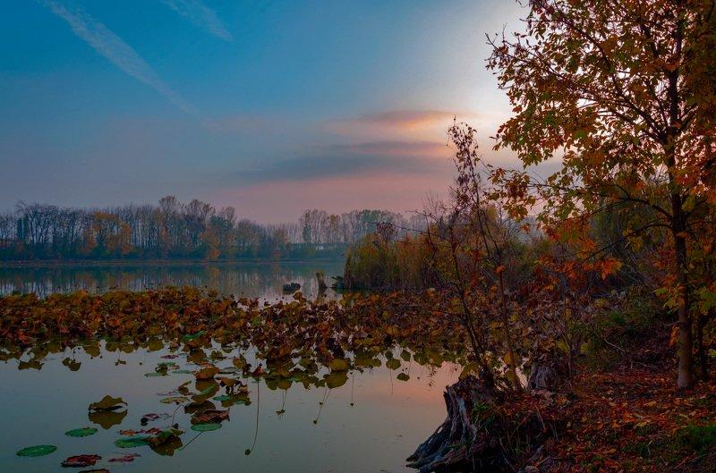 Рыжая осень речки Ставокphoto preview