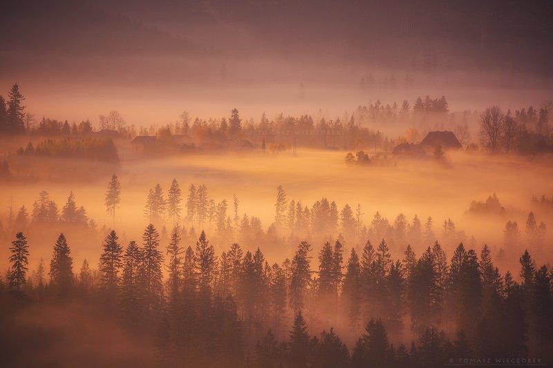 mountains, poland, polish, landscape, sunrise, sunset, colours, autumn, awesome, amazing, adventure, travel, beautiful, morning, fog, mist, mood Early morningphoto preview
