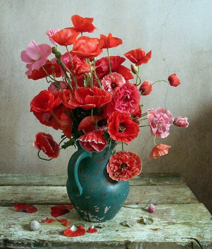 лето,  цветы, маки, натюрморт, марина филатова Как алых бабочек развернутые крылья..photo preview