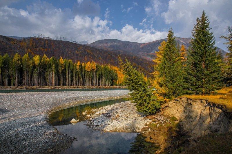 горы осень алтай. аргут На реке Аргут.photo preview
