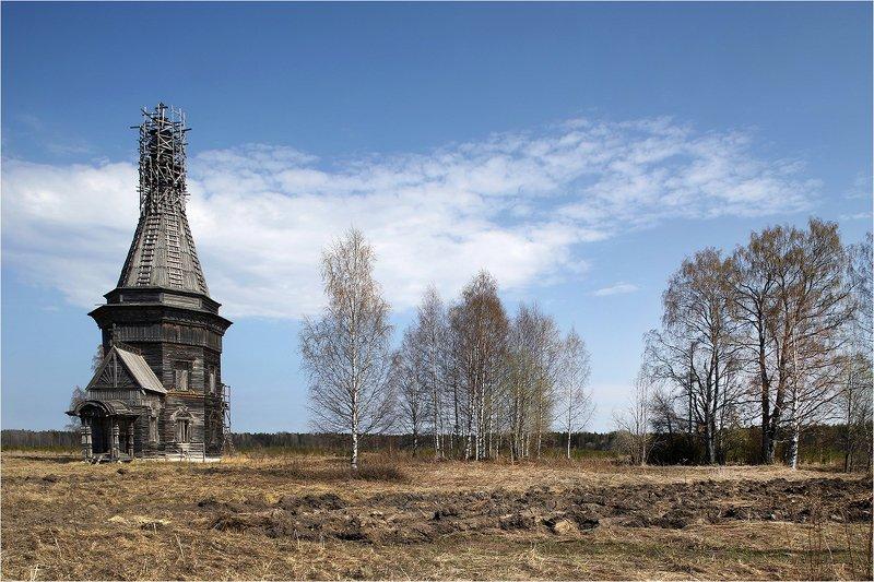 весна, поле, храм, деревянный храм, реставрация, север, русский север, каргополье, Май.photo preview
