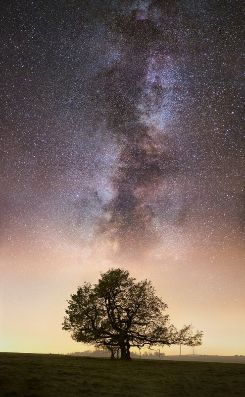 landscape, tree, stars, panorama, milky way Solitair and Starsphoto preview