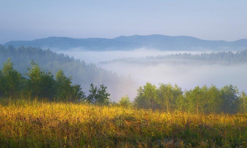 Прикарпатье, лето, путешествие, пейзаж, туман, утро, свет, горы, лес, morning, foggy, misty, light, fog, Carpathians, landscape, forest Туманные этюды Прикарпатьяphoto preview