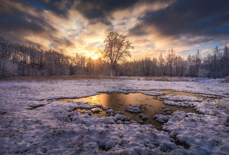 Первые заморозкиphoto preview