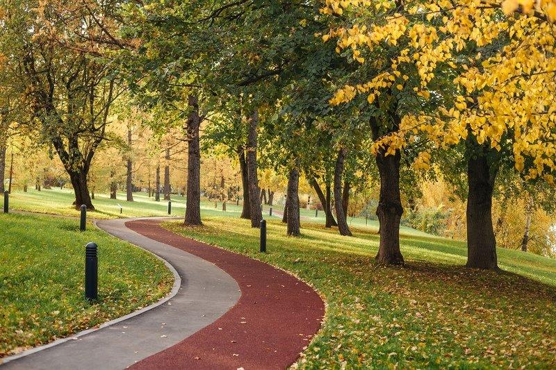 Зеленоград Осень в Зеленоградеphoto preview