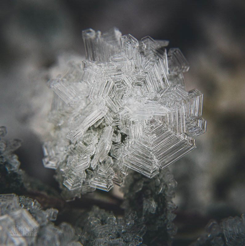 ice,crystals,frost,hoar frost,winter,cold,freezeing,water,frozen,abstract, Winter magic in macro worldphoto preview