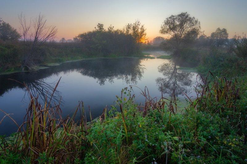 река, волчья, туман, утро, рассвет Перед рассветомphoto preview
