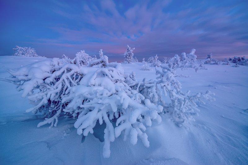 А в Кандалакше уже зима...photo preview
