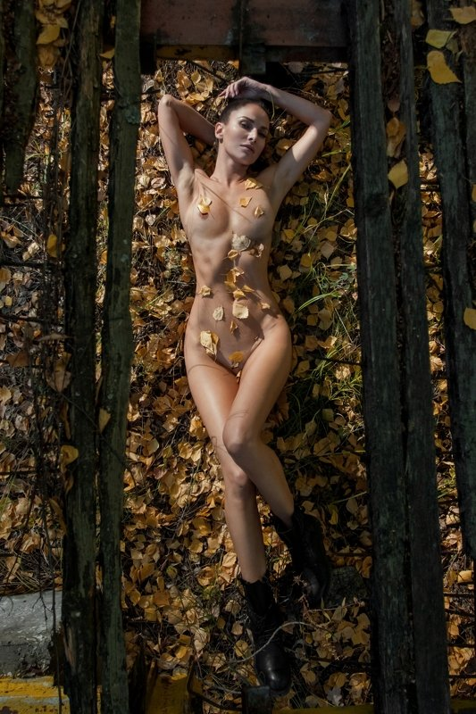 model, nude, autumn, мinimalism, art Autumnphoto preview