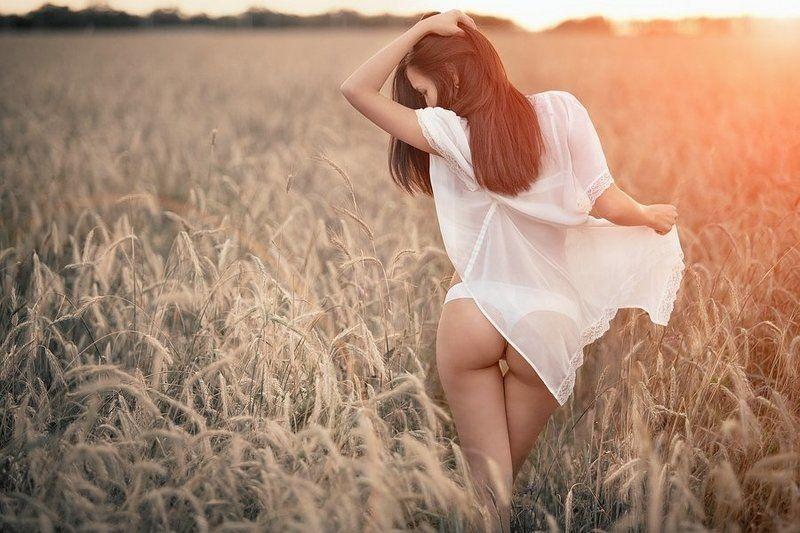 девушка, в, поле, на, закате ***photo preview