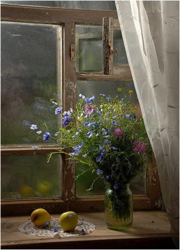 окно Натюрмортphoto preview